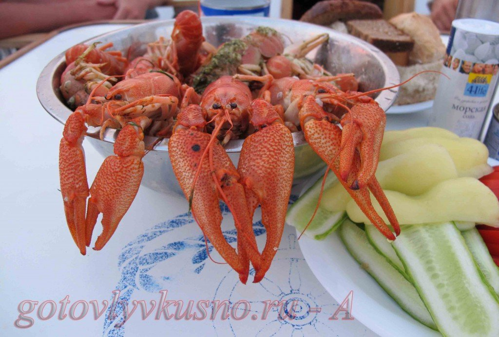 основные виды морепродуктов - краткая характеристика