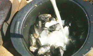 наливаем сливки в кастрюлю
