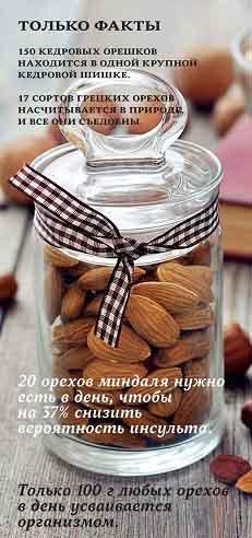 использование орехов в кулинарии