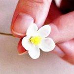 Цветы для украшения торта из мастики